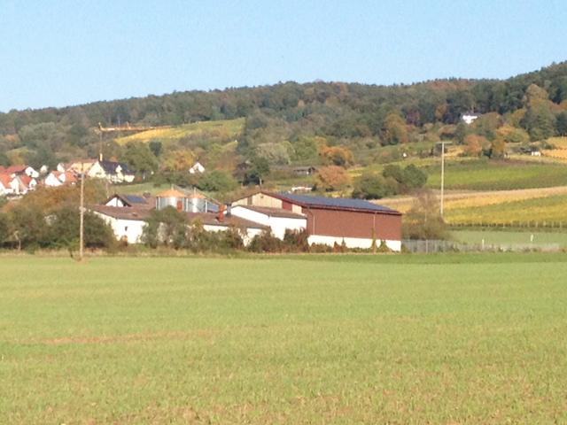 Birkenhof Hörstein